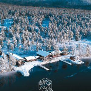 Arctic Sauna World cover