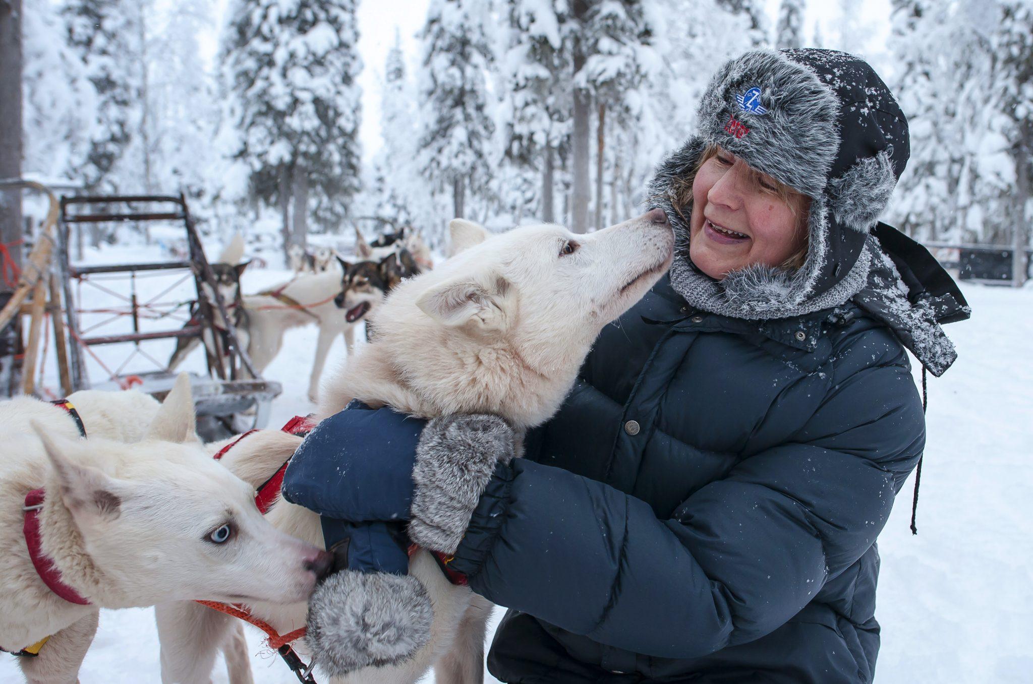 Destination Lapland Oy