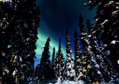 Utkujärven majat winter
