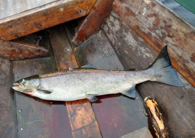 Salmon River Muonionjoki fishing Hunterofthenorth by MarkkuRauhala