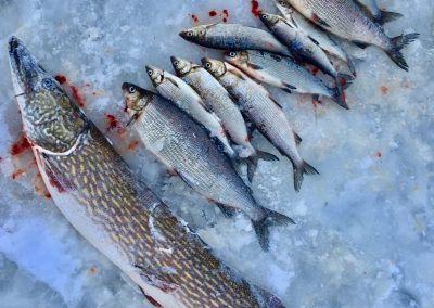 Winterfishing HunterofhteNorth by LauraHokajarvi