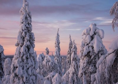 Activity Keimiolahen Maja snowshoeing DiscoverMuonio