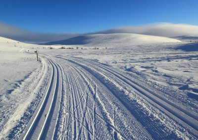 Fell Trek ski tracks