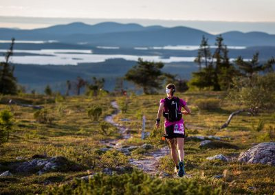 Finland summer NUTS Pallas Trail Run Aapo Laiho Visit Finland