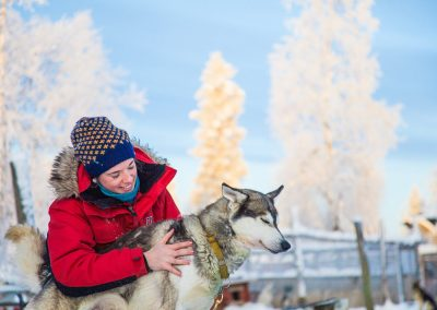 Harriniva Hotels Safaris Huskies