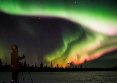 Northern Lights Wildmaker Lapland Valtteri