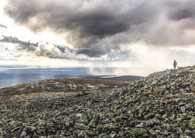 Pallas rakka Heikki Sulander Metsähallitus DiscoverMuonio Hiking