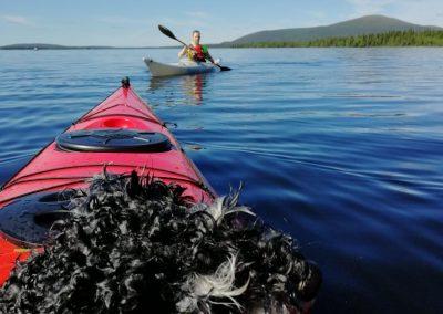 Villa Rauha canoeing